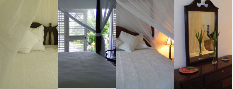 Pimento, Nutmeg, Cinnamon, Pepper, Ocho Rios guest rooms